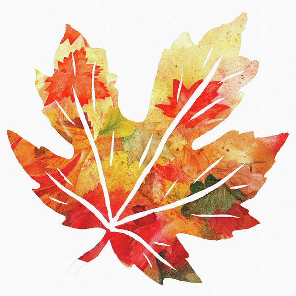 Painting - Maple Leaf Watercolor Silhouette  by Irina Sztukowski