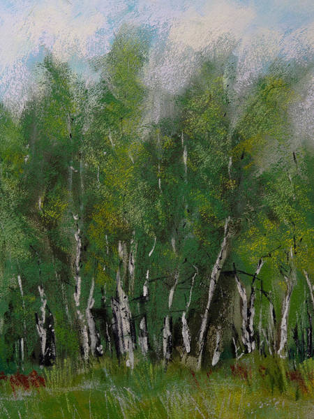 Wall Art - Painting - Maple Ridge Birch Trees by David Patterson
