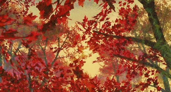 Wall Art - Digital Art - Maple Tree Sunset by Karim Alhalabi