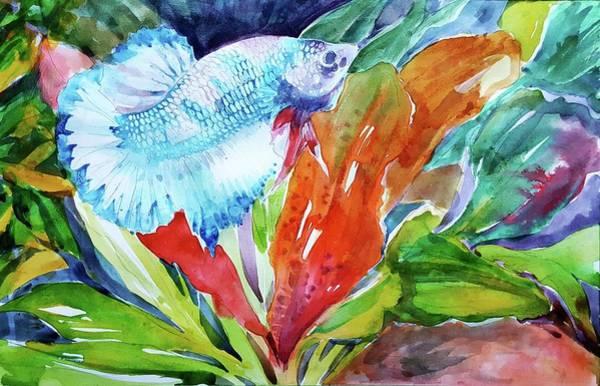Betta Fish Paintings (Page #5 of 5) | Fine Art America