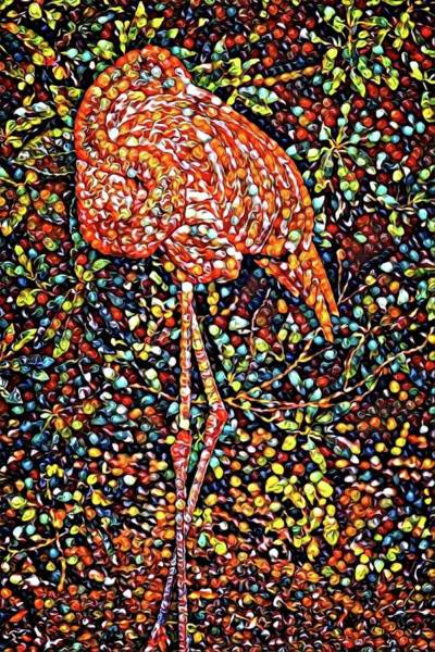 Photograph - Marbled Flamingo by Alice Gipson