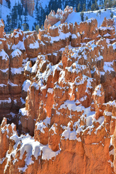 Photograph - March Of Hoodoos by Ray Mathis