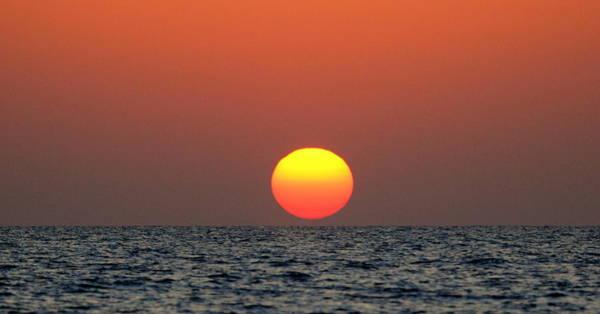 Photograph - March Sun by Sean Allen