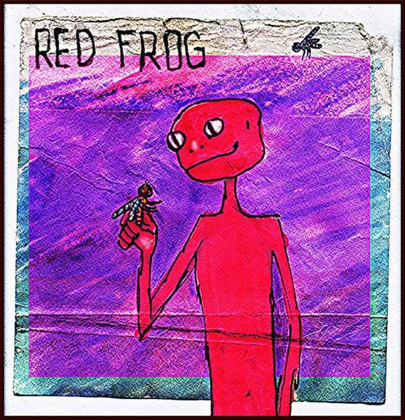 Drawing - Marc's  Red  Frog by Marc Jager