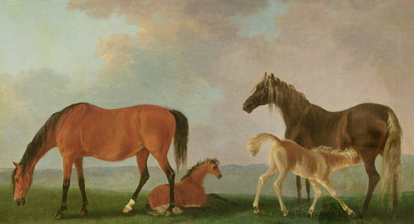 Paddock Wall Art - Painting - Mares And Foals by Sawrey Gilpin