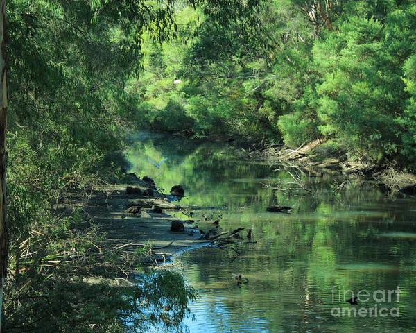 Photograph - Margaret River, Western Australia by Elaine Teague