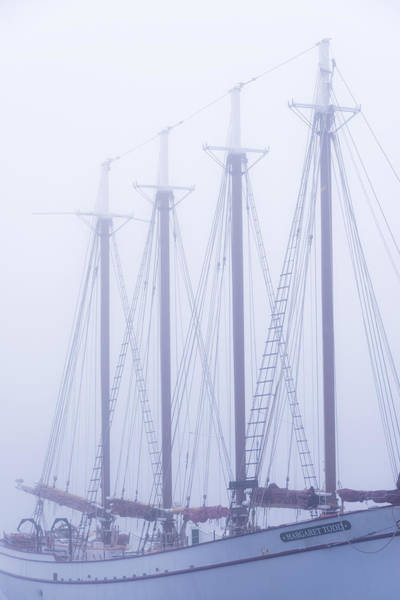 Sail Boat Photograph - Margaret Todd by Chad Dutson
