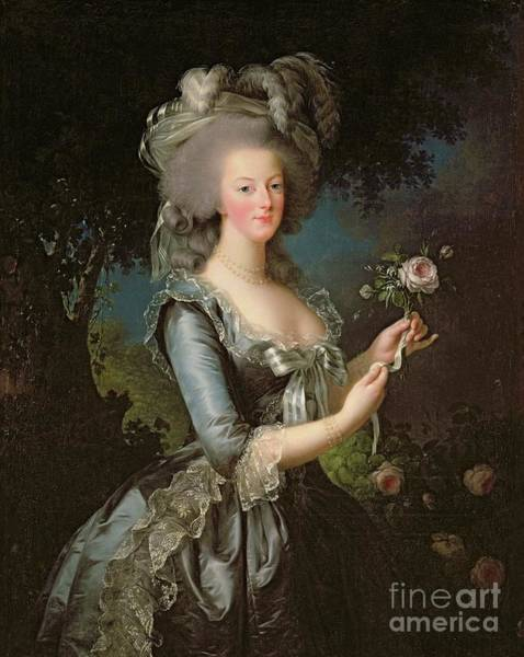 France Wall Art - Painting - Marie Antoinette by Elisabeth Louise Vigee Lebrun