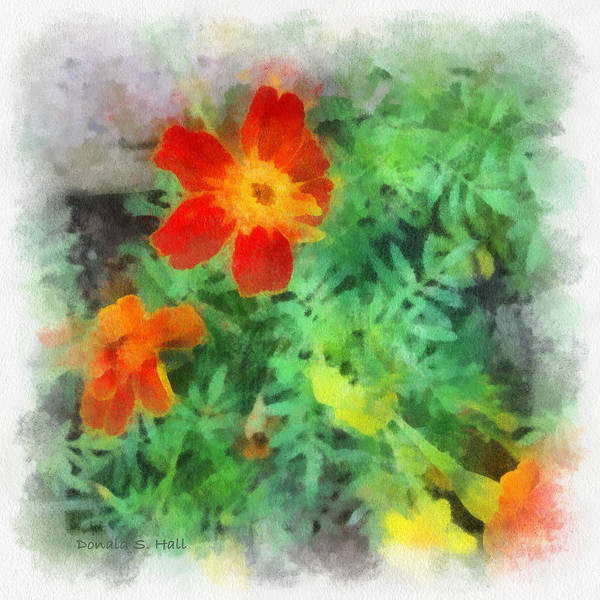 Digital Art - Marigolds by Donald S Hall