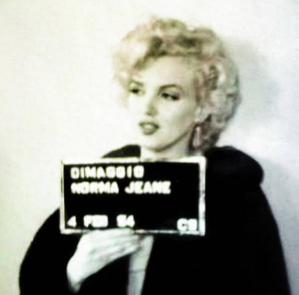 Wall Art - Photograph - Marilyn Monroe Mugshot by Digital Reproductions