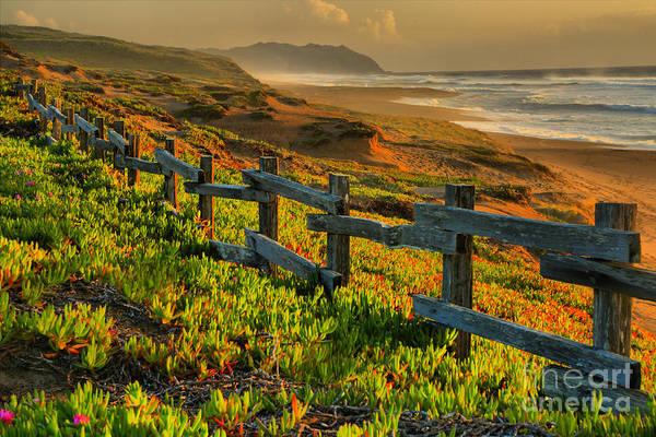 Photograph - Marin County Golden Sunset by Adam Jewell