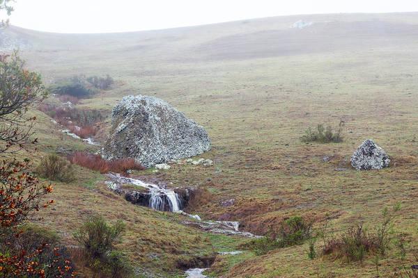 Photograph - Marin Rocks In The Rain by Peter Dyke
