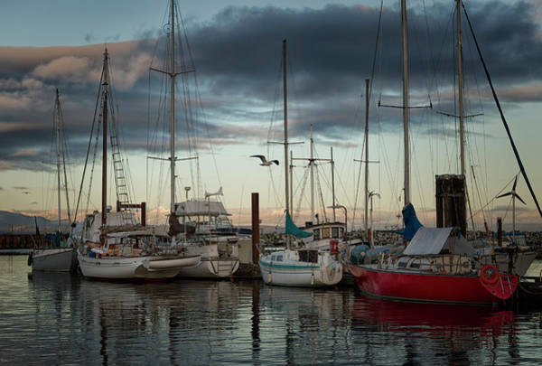 Photograph - Marina At Dusk 3 by Randy Hall