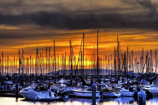 Photograph - Marina At Sunset by Brad Granger