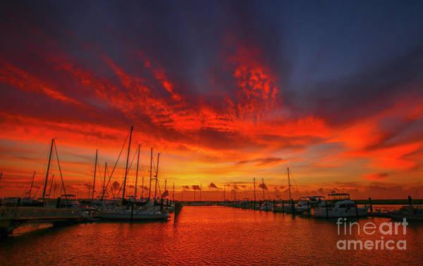 Photograph - Marina Sunrise - Ft. Pierce by Tom Claud