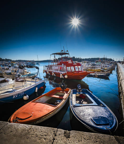 Photograph - Marina Under The Sun by Francisco Gomez