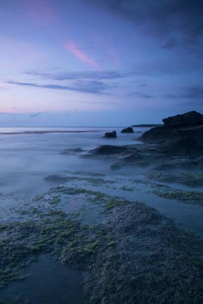 Gitana Wall Art - Photograph - Marine Art by Ariel Gitana