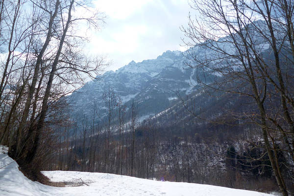 Photograph - Maritime Alps In Winter by Laura Greco