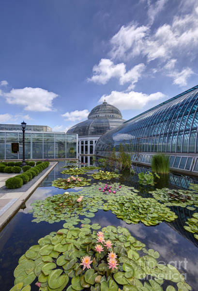 Conservatory Photograph - Marjorie Mcneely Conservatory At Como Park And Zoo by Wayne Moran