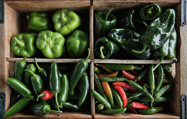 Photograph - Market Peppers by Bud Simpson