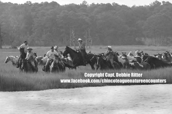 Photograph - Marlboro Men 11 by Captain Debbie Ritter