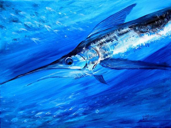 Painting - Marlin, Feeding by J Vincent Scarpace