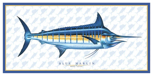 Painting - Marlin Id by Jon Q Wright