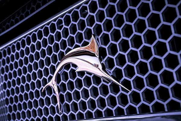 Blue Marlin Photograph - Marlin In A Honeycomb Sea by Caitlyn Grasso
