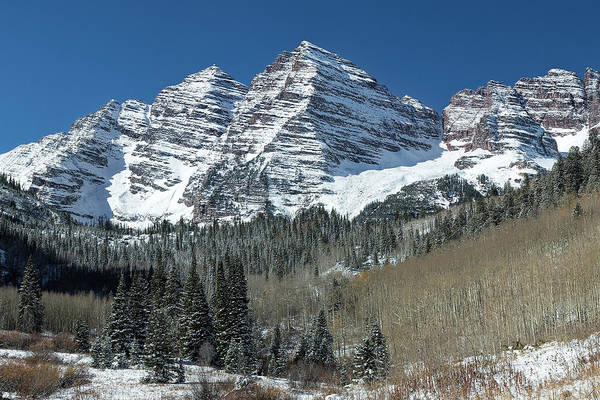 Photograph - Maroon Bells And Christmas Trees by Jemmy Archer