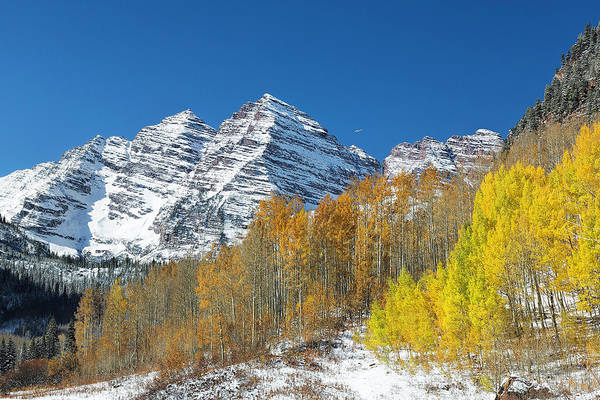 Photograph - Maroon Bells Scenic Trail by Jemmy Archer