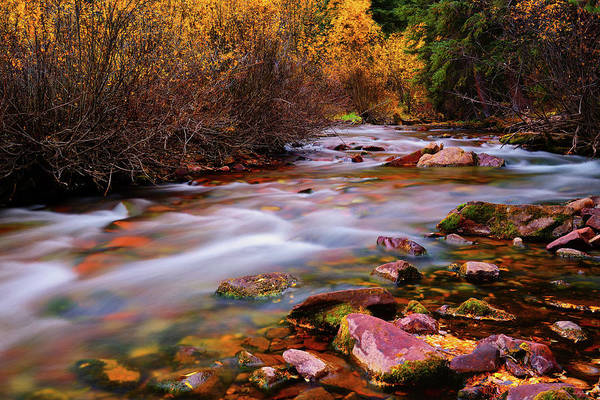 Photograph - Maroon Creek by Greg Norrell