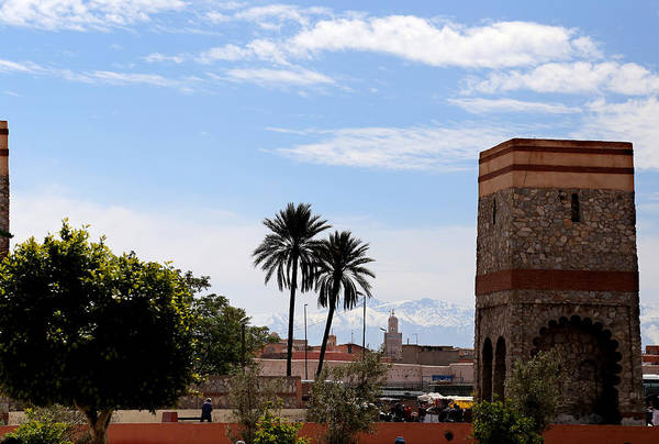 Photograph - Marrakech 2 by Andrew Fare
