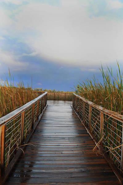 Wall Art - Photograph - Marsh Boardwalk by Abbey Hughes