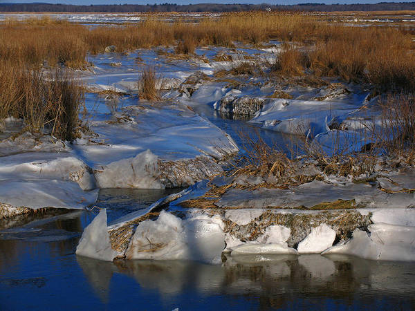 Photograph - Marsh Channels On Plum Island by Juergen Roth