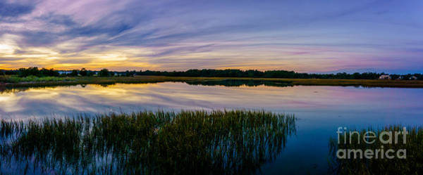Photograph - Marsh Of Colors by David Smith