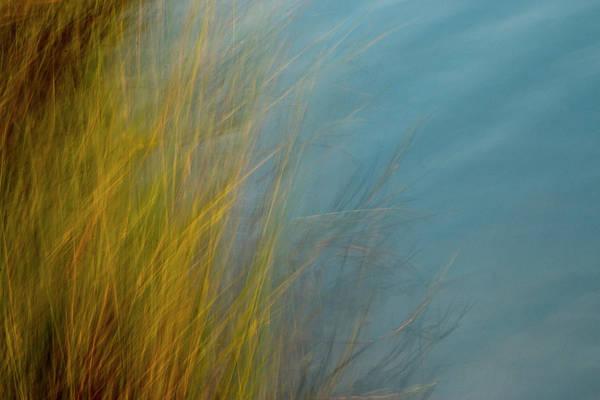 Marsh Grass Photograph - Marsh Sweep by Nicole Robinson