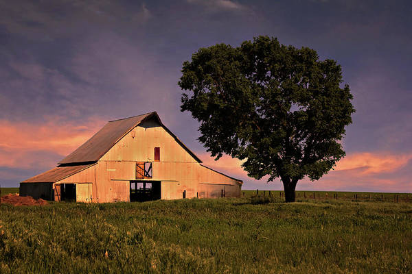 Farmyard Photograph - Marshall's Farm by Lana Trussell
