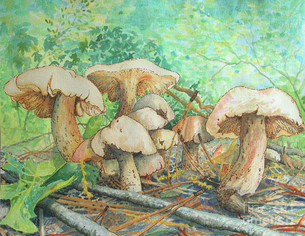 Painting - Marvelous Mushrooms Hidden In Gibbs Gardens by Nicole Angell
