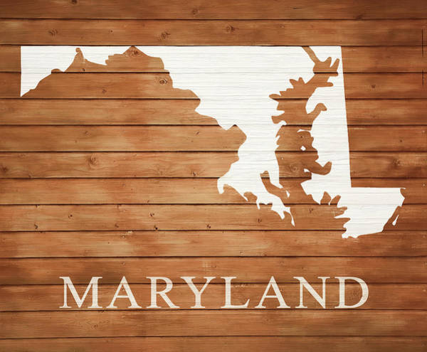 Traveler Mixed Media - Maryland Rustic Map On Wood by Dan Sproul