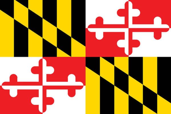 Painting - Maryland State Flag by American School