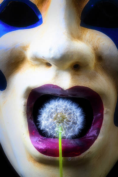 Dandelion Puff Photograph - Mask And Dandelion by Garry Gay