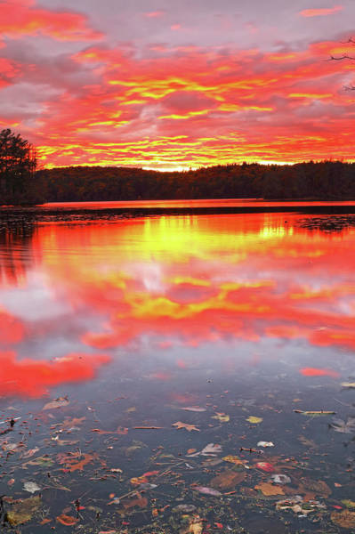 Photograph - Massachusetts Skyfire by Juergen Roth