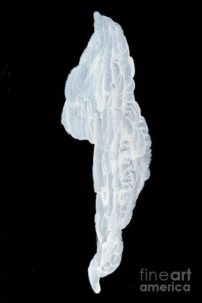 Photograph - Massive Icicle by Mary Mikawoz