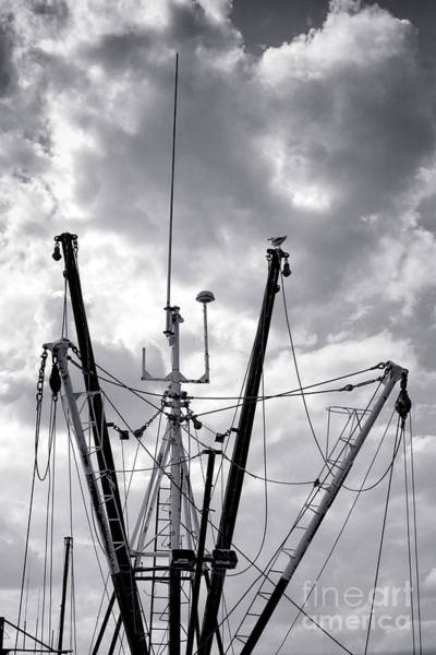 Photograph - Mast And Booms by Olivier Le Queinec