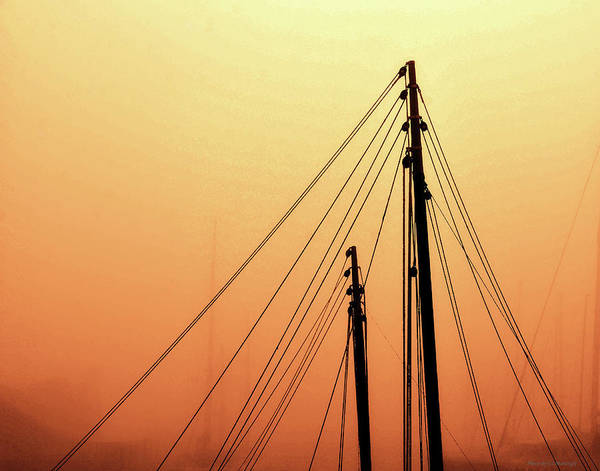 Photograph - Masts by Coleman Mattingly