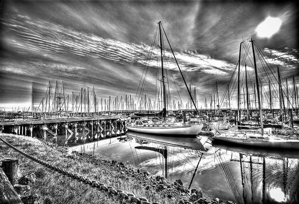 Port Townsend Photograph - Masts In Harbour by Dale Stillman