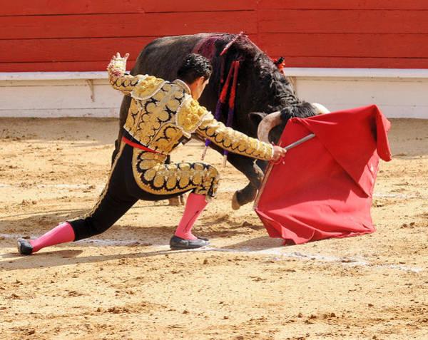 Toreador Photograph - Matador Kneeling With Bull by Clarence Alford