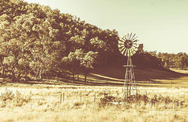 Photograph - Mathinna Farmyard Field by Jorgo Photography - Wall Art Gallery