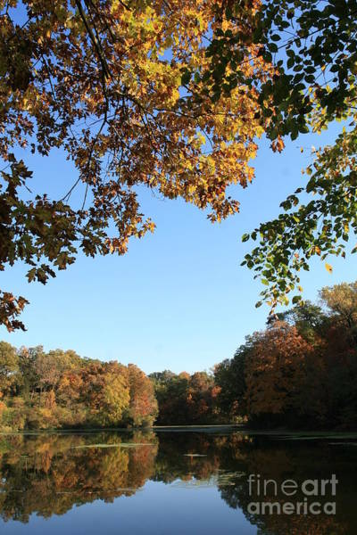 Photograph - Matthiessen Lake In Autumn by Paula Guttilla