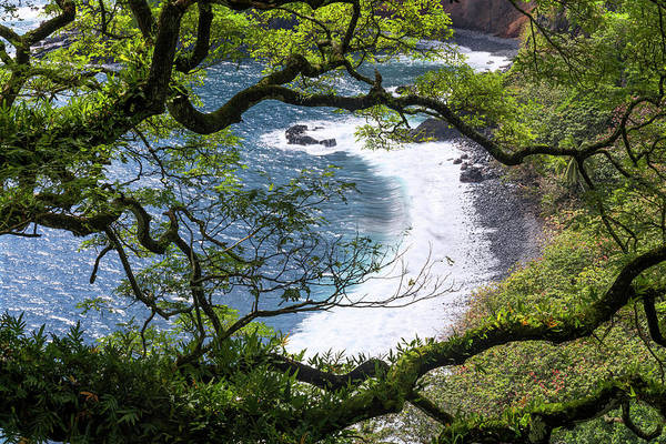 Framing Photograph - Maui by Chad Dutson